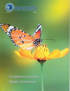Revista Nº 36